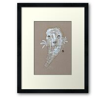 Illustrations 23 Framed Print
