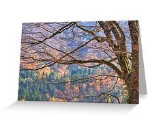 Fall colors in the Japanese alps Greeting Card