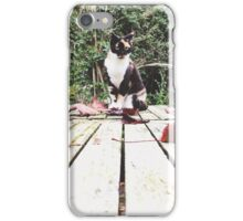 A lookout spot (a 365 with my cats) iPhone Case/Skin