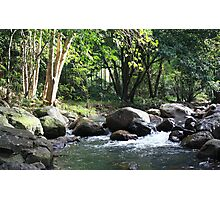 Korrumbyn Creek NSW Photographic Print