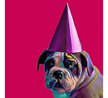 Pink Birthday Pup Photographic Print