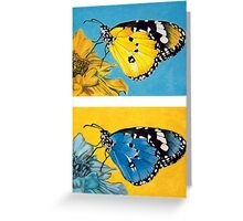 Pop Art Butterflies Greeting Card