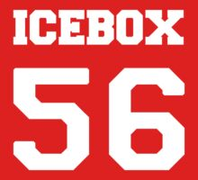 Icebox by Simone Anderson