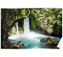 Hermon Stream Nature reserve (Banias) Golan Heights Israel Poster
