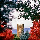 Clock Tower—Government House Tasmania by Brett Rogers