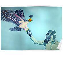 Falconiere Poster