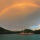 Rainbow over Biras Creek by Leon Heyns