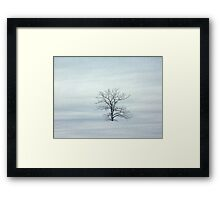 Old Winter Tree Framed Print