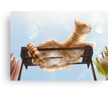My Neighbour's Cat Canvas Print