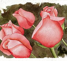 Roses by Anthony Billings