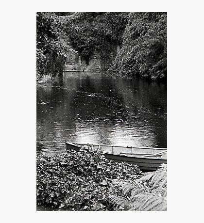 Pond—Government House Tasmania Photographic Print