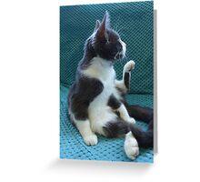 Shadow, washing, hears the postman Greeting Card