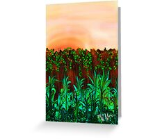 Sunset Over Fence Greeting Card