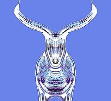 Bull, purple and blue by Penny Marcus