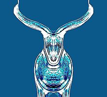 Bull, teal and blue by Penny Marcus