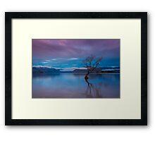 Wanaka Willow Framed Print