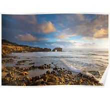 Golden Light- Mornington Peninsula  Poster