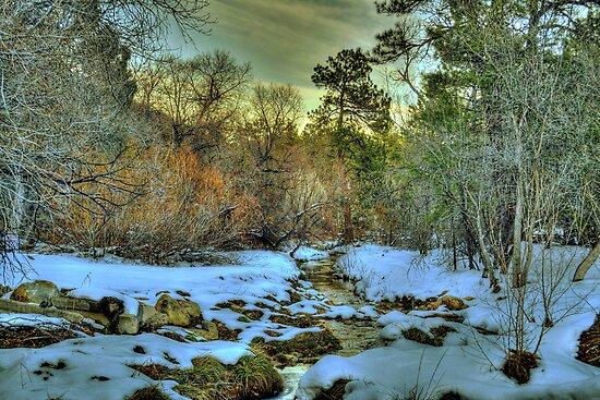 White Icing At Sundown by Diana Graves Photography