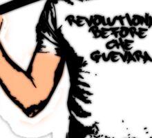 Origin of Revolution Sticker