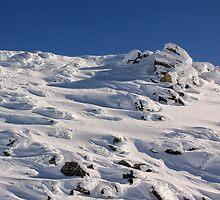 Snow Patterns by Charles Kosina