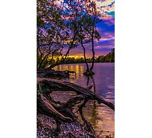 Black park lake view Photographic Print