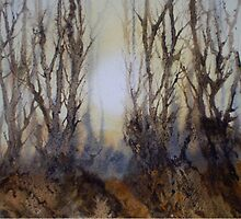 The Clearing in the Mist by Jacki Stokes