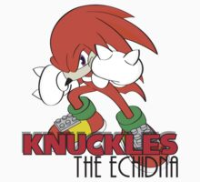 Knuckles the Echidna by ashworth91