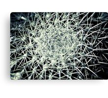EXPLOSION IN GREY!!! Flowers Canvas Print