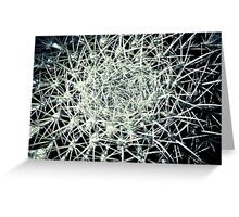 EXPLOSION IN GREY!!! Flowers Greeting Card
