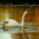 Swan And Eaglet by artisandelimage