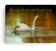 Swan And Eaglet Canvas Print