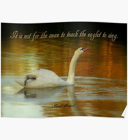 Swan And Eaglet Poster