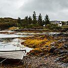 The Bay - Drumbuie, Scotland by David Lewins