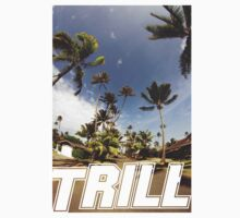trill 2 by staytrill