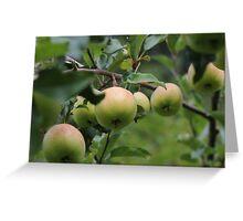 Nanna Apples Greeting Card