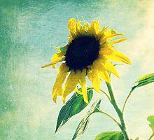 Sunflower 1 by ElleEmDee