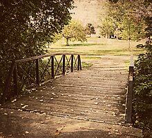 Bridge to Nature by ElleEmDee
