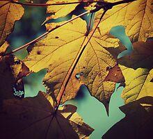 Tattered Leaves by ElleEmDee