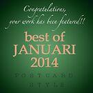 Challenge Best of Januari 2014 - banner by steppeland