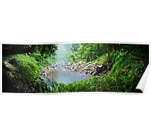 Crystal Shower Falls, Dorrigo National Park, New South Wales, Australia Poster