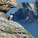 skellig michael county kerry ireland star wars by Noel Moore Up The Banner Photography
