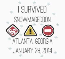 Snowmageddon, Atlanta- Black Type by Maggie Smith