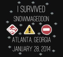 Snowmageddon, Atlanta- White Type by Maggie Smith