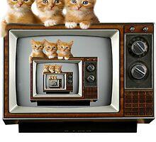 Kitty TV by zbrewington