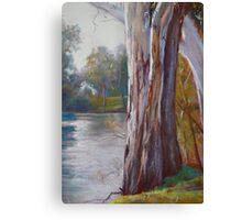 Goulburn River Gums Canvas Print