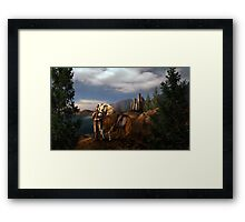 Knight of Kingdom Framed Print