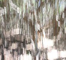 Paperbark Impression 1 by Elisabeth Thorn
