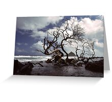 Hana Coast Greeting Card