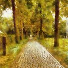 A Lane to Castle Hof ter Linden - Edegem - Belgium by Gilberte