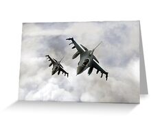 Fighting Falcons Greeting Card